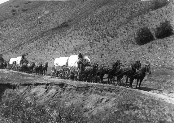 Boise Waggons | The Wild West is Tamed (1870-1910) | U.S. History