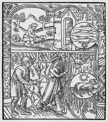 March, fishing and pruning trees, Pisces, illustration from the 'Almanach des Bergers', 1491