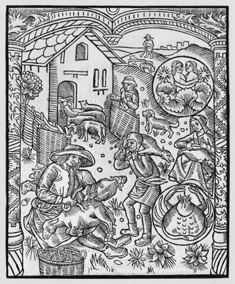 June, sheep shearing, Gemini, illustration from the 'Almanach des Bergers', 1491