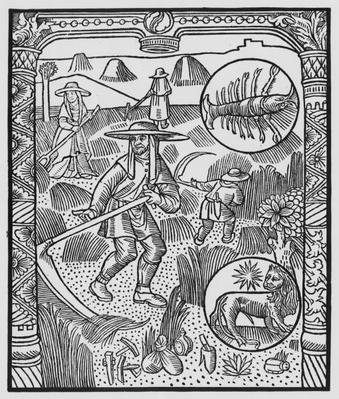 July, haymaking, Cancer, illustration from the 'Almanach des Bergers', 1491