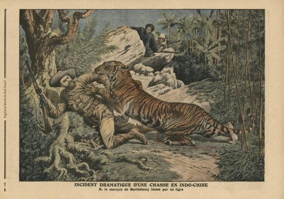 Marquis of Barthelemy wounded by a tiger, illustration from 'Le Petit Journal', supplement illustre, 17th February 1907