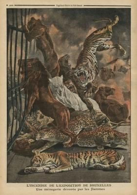 The fire at the Universal Exhibition of Brussels, a menagerie being consumed by the flames, illustration from 'Le Petit Journal', supplement illustre, 28th August 1910