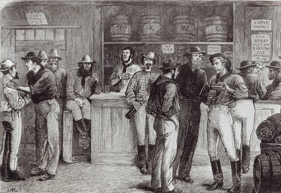 'A general shout', inside a bush tavern, 1878