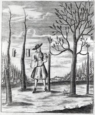 Gardening and Plant Maladies, an illustration from 'Neue Garten-lust' by Heinrich Hesse, 1696