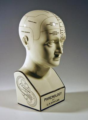 Glazed phrenological bust, c.1860