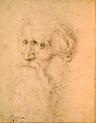 Portrait of a bearded old man