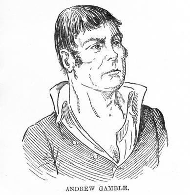Andrew Gamble