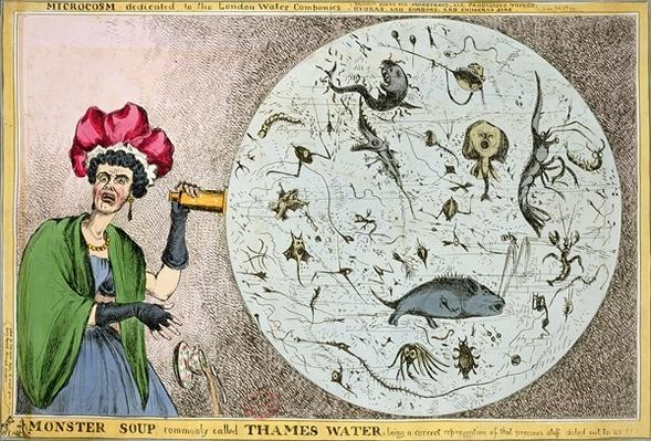Microcosm dedicated to the London Water Companies: Monster soup commonly called Thames Water