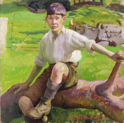 A Cornish Boy