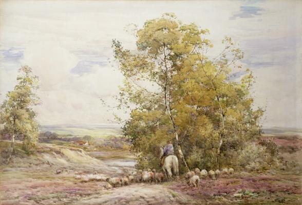 Dorset Pastoral
