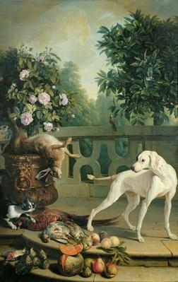 Animals, flowers and fruits
