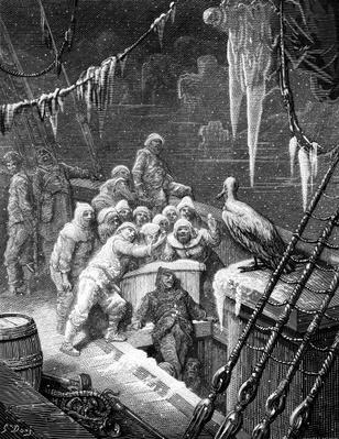 The albatross being fed by the sailors on the the ship marooned in the frozen seas of Antartica