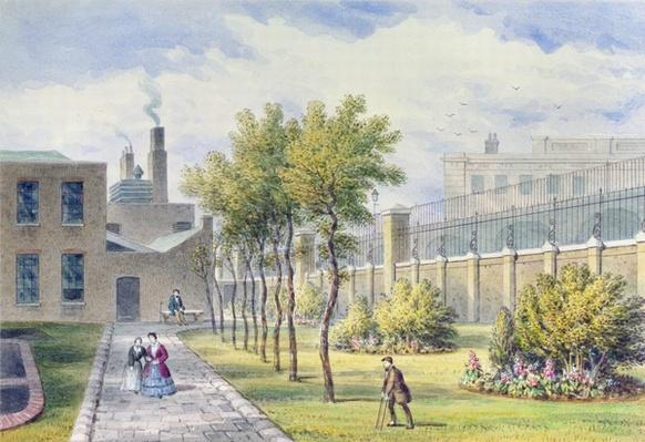 Garden of St. Thomas's Hospital, Southwark, London
