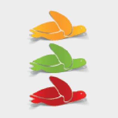 Realistic Design Element: Sea Turtle | Clipart
