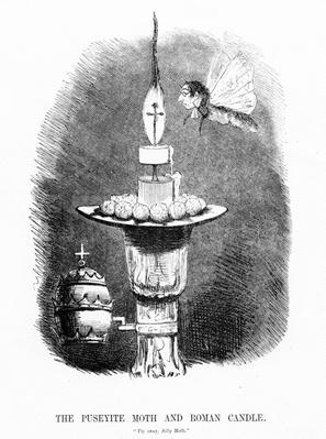 The Puseyite Moth and the Roman Candle, illustration from 'Punch', 1850