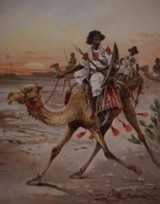 A Dervish warrior on a camel, c.1900