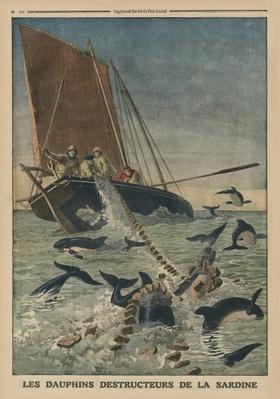 Dolphins destroying sardines, front cover illustration from 'Le Petit Journal', supplement illustre, 23rd March 1913