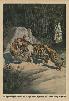 Tiger attacking a British officer, back cover illustration from 'Le Petit Journal', supplement illustre, 3rd August 1913