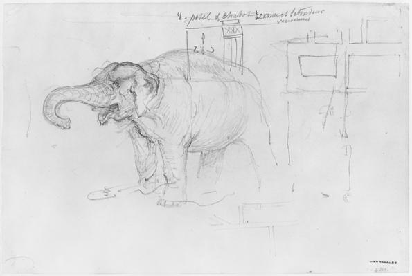 Album of the Siege of Paris, Elephant