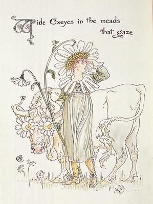 'Wild Oxeyes in Meads that Gaze', illustration to 'Flora's Feast, A Masque of Flowers'