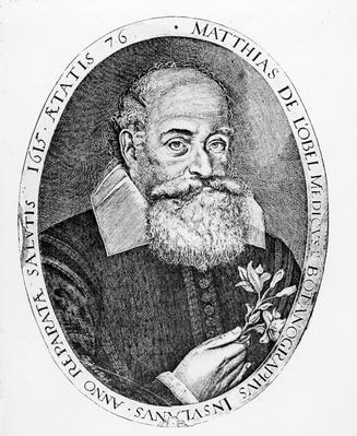 Matthias de l'Obel