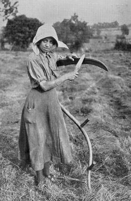 Harvesting - Member of the Leicester Women's Volunteer Reserve helping a farmer, War Office photographs, 1916