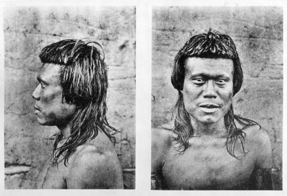 Portrait and profile of Bororo man of central Brazil, from 'Among the Primitive Peoples of Central Brazil 1887-1888', Karl von den Steinen, 1894