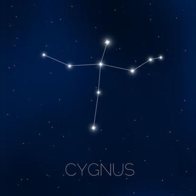 Cygnus constellation in night sky | Earth and Space