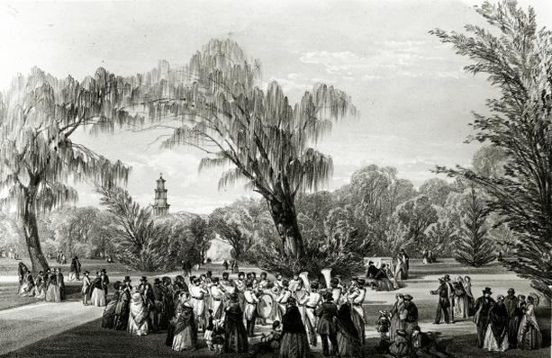 Botanical Gardens, Cape Town, print made by W. Simpson, c.1850s