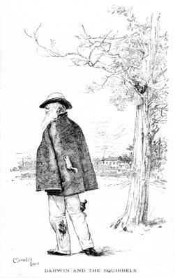 Darwin and the Squirrels, illustration from 'Charles Darwin, His Life and Work' by Charles Frederick Holder, 1899
