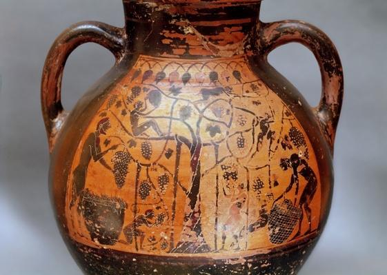 Rhodian style amphora depicting the picking of grapes