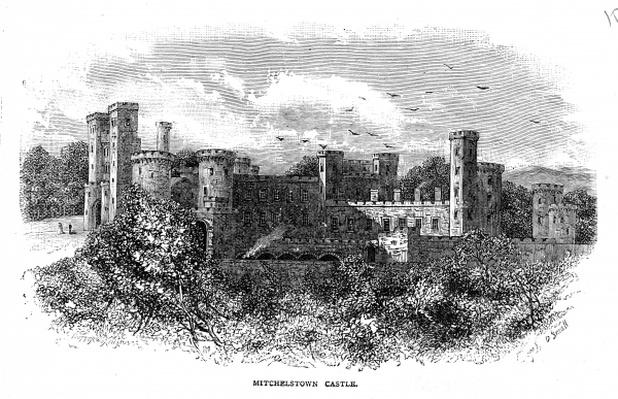 Mitchelstown Castle, engraved by D. Small