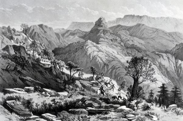 On the march near Dongolo, engraved by James Ferguson, 1868