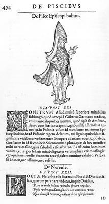 Sea Monster, illustration from 'Libri de Piscibus Marinis' by Guillaume Rondelet, published 1554