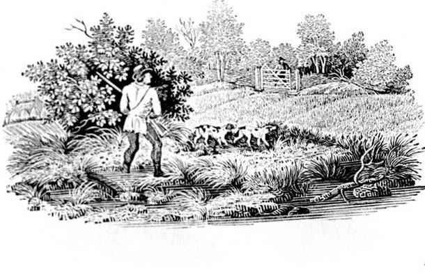 Sportsman with Two Dogs from 'Land Birds' 1797