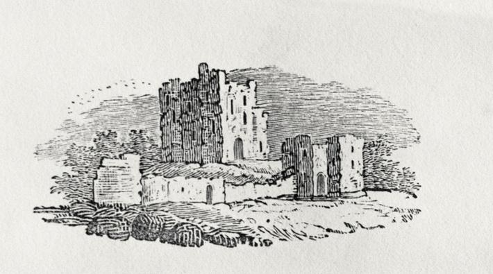 Castle Ruins from 'History of British Birds and Quadrupeds'