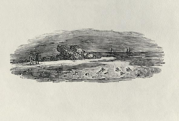 Rocks with Coastal Shipping, c. 1801, from 'Water Birds', published 1804