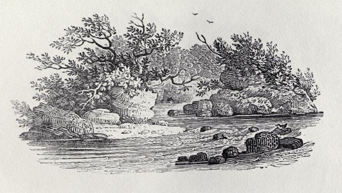 A Bend in the River from 'History of British Birds, Volume 2: Water Birds', 1804