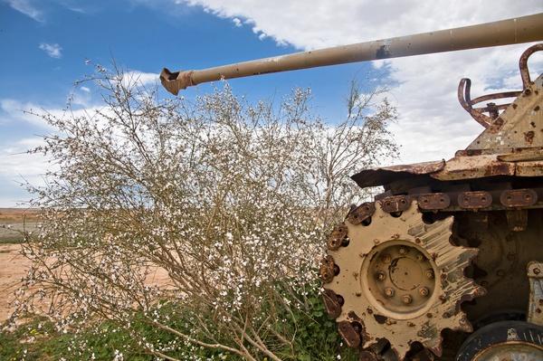 Tank - Gaza Strip   Palestine-Israel Conflict