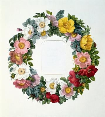 Wreath of Roses, Frontispiece for 'Les Roses', 1817