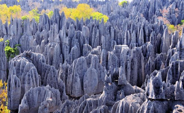 Stone blades at Tsingy de Bemaraha, Madagascar | UNESCO World Heritage Site