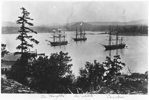 HMS Charybdis, HMS Satellite and HMS Cameleon at Esquimalt Royal Navy Dockyard, British Columbia, c.1880s