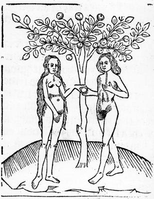 Adam and Eve, illustration from the 'Speculum Vitae Christi', 1491