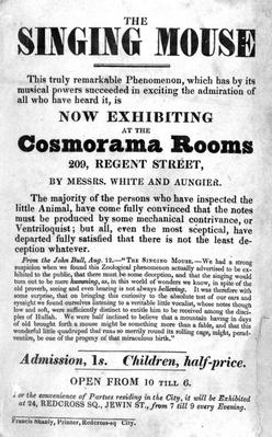 Bill Poster for 'The Singing Mouse' exhibition at the Cosmorama Rooms, 209 Regent Street, c. 1836