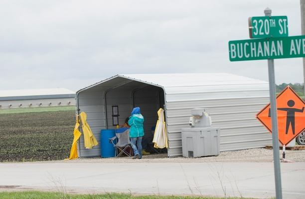 Bird Flu Outbreak Threatens Iowa's Chicken Farm Industry | Agriculture and Forestry