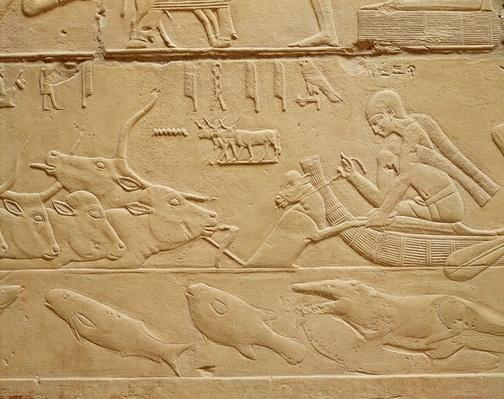 Cattle crossing a ford, from the Mastaba of Kagemni