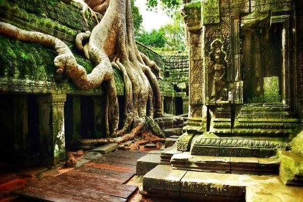 Ta Prohm Angkor Wat Cambodia | Ancient Civilizations