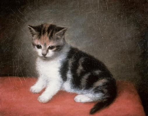 Miss Ann White's Kitten, 1790