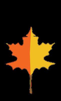 Autumn Season - Maple Leaf | Clipart