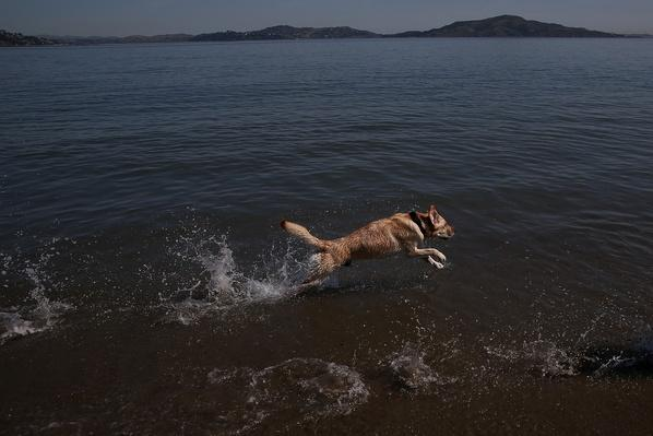 Bay Area Experiences Record Temperatures | Weather